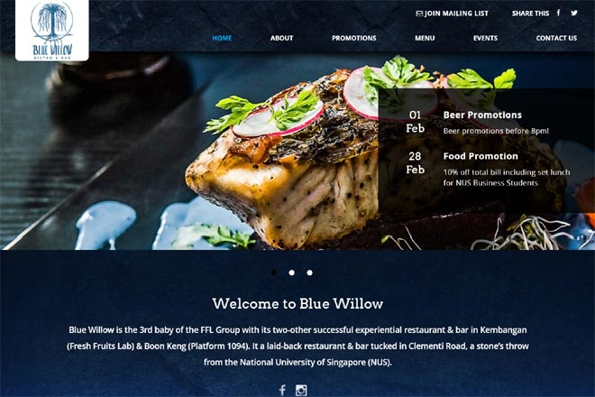 website_design_for_Blue_Willow